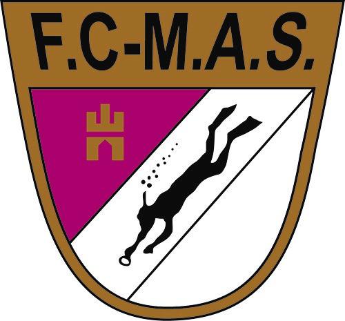 FCMAS