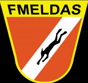 FMELDAS